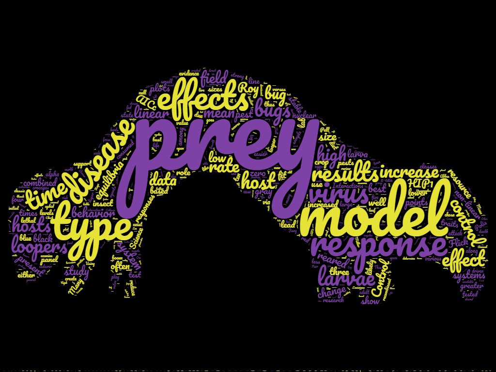 wordcloud3
